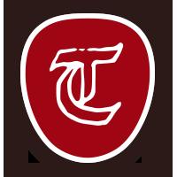 Tolls Heizoel T Icon